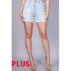 PLUS-P21537