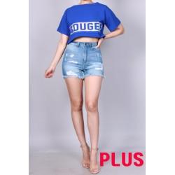 PLUS-P21380